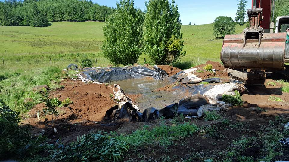3Rs Construction Remodel - Remove old pond