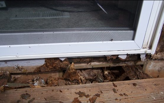 3Rs Construction Salem Oregon Dry Rot Repair