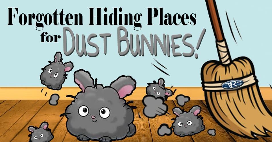 3Rs Construction Salem Oregon Dust Bunnies Home Maintenance